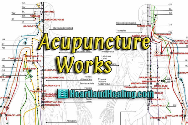 An interesting read on why acupuncture works:_0